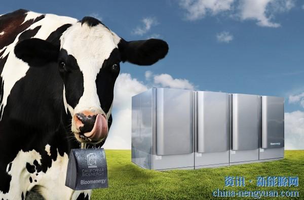 世界首个奶牛场废弃物无燃烧发电解决方案在美加州部署