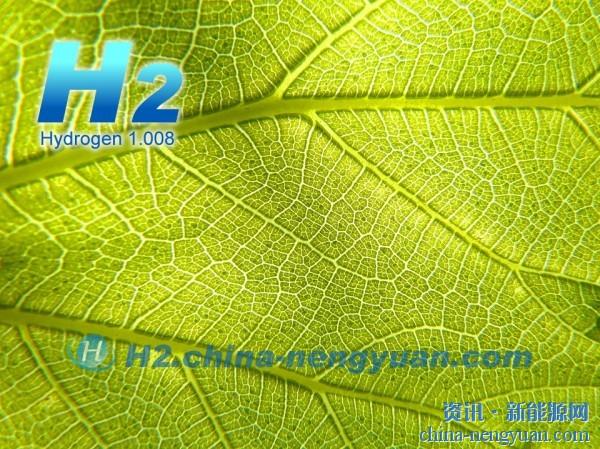 生物质制氢技术受到美国能源部支持